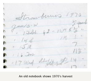 An old notebook shows 1907's harvest