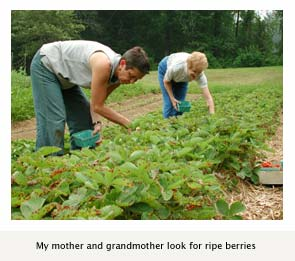 My mother and grandmother look for ripe berries