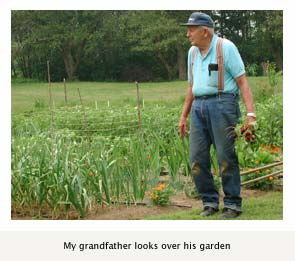 My grandfather looks over his garden