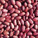cranberry_bean.jpg
